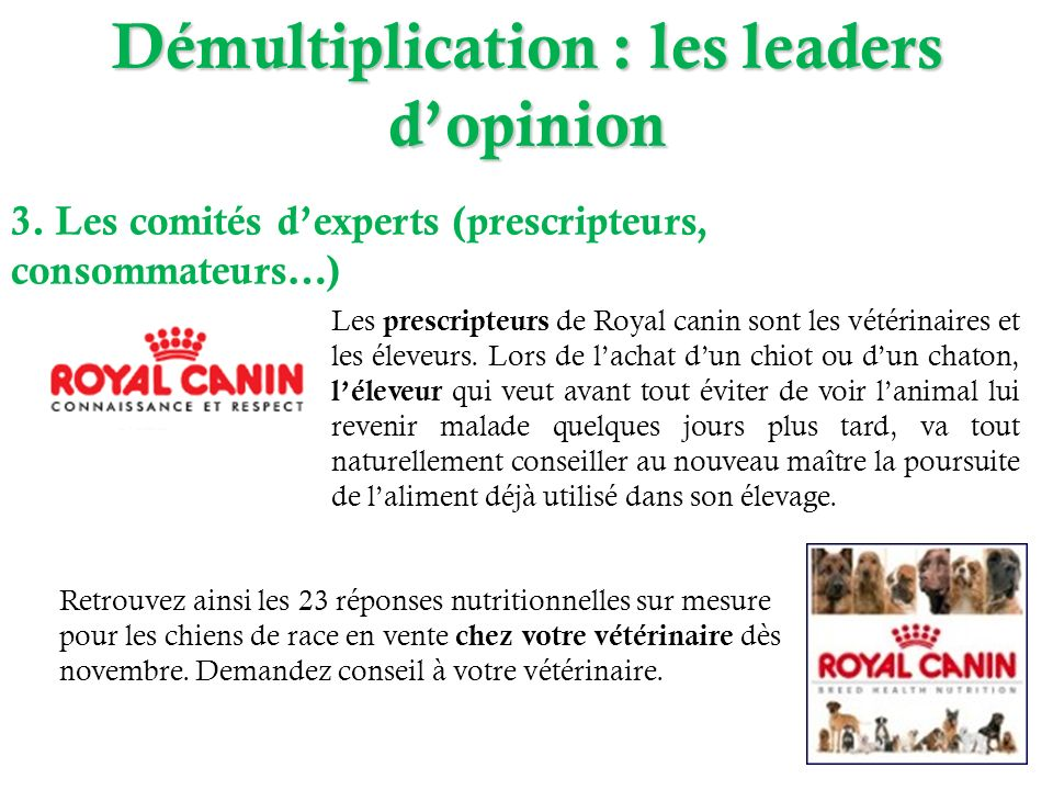 Démultiplication : les leaders dopinion 3. Les comités dexperts (prescripteurs, consommateurs…) Les prescripteurs de Royal canin sont les vétérinaires