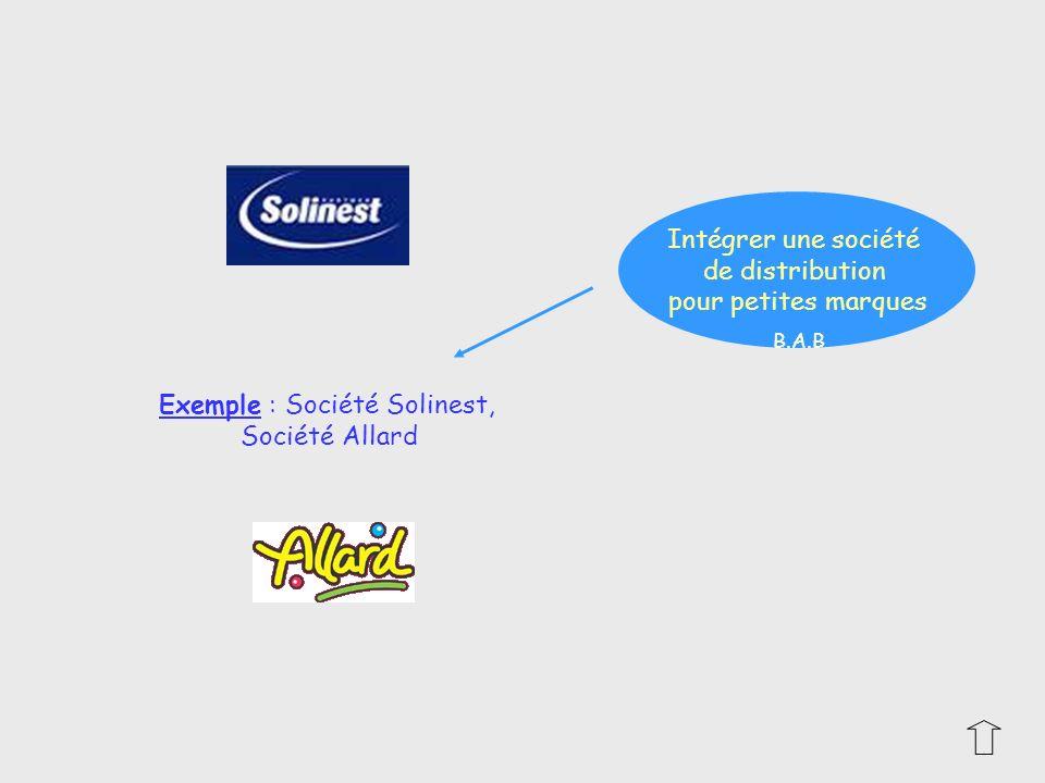 Exemple : Société Solinest, Société Allard Intégrer une société de distribution pour petites marques B.A.B