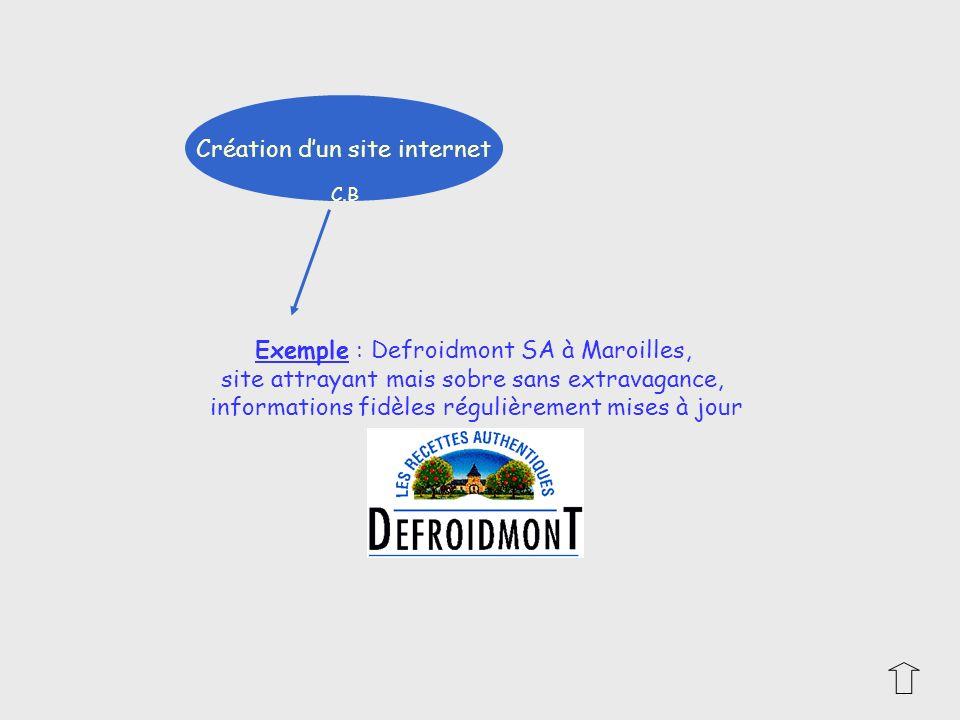 Création dun site internet Exemple : Defroidmont SA à Maroilles, site attrayant mais sobre sans extravagance, informations fidèles régulièrement mises
