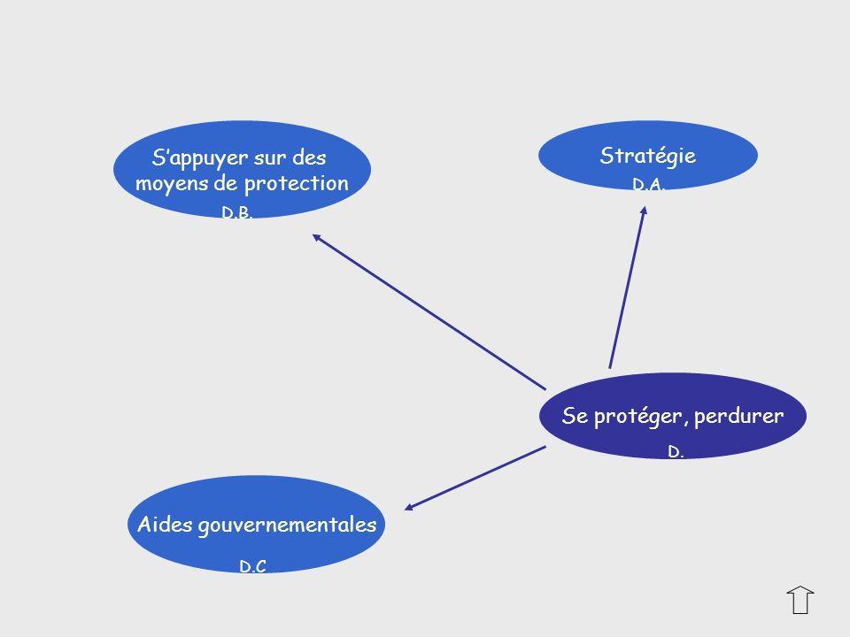 Sappuyer sur des moyens de protection Aides gouvernementales Stratégie Se protéger, perdurer D. D.B. D.A. D.C