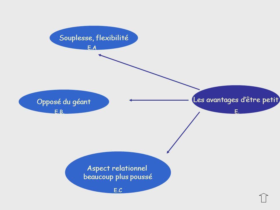 Les avantages dêtre petit Souplesse, flexibilité Aspect relationnel beaucoup plus poussé Opposé du géant E. E.C E.B. E.A