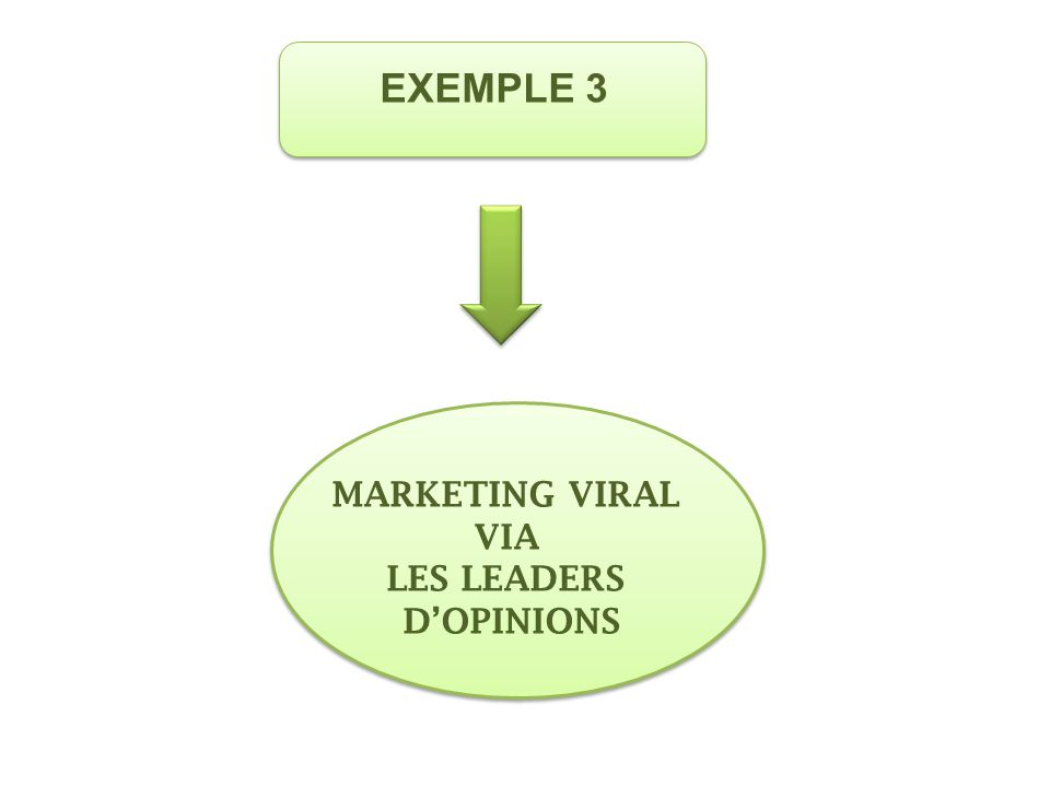 MARKETING VIRAL VIA LES LEADERS DOPINIONS EXEMPLE 3