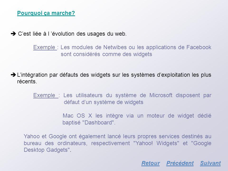Pourquoi ça marche? Cest liée à l évolution des usages du web. Exemple : Les modules de Netwibes ou les applications de Facebook sont considérés comme
