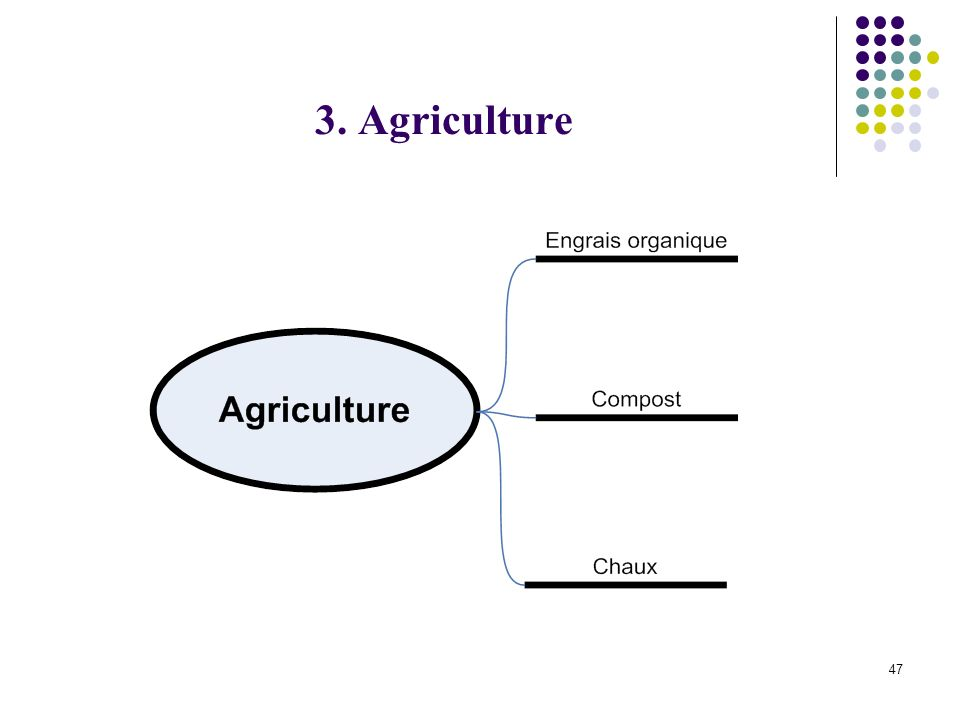 47 3. Agriculture