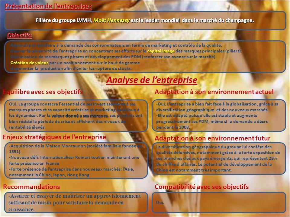 Equilibre avec ses objectifs Présentation de lentreprise : Objectifs: Adaptation à son environnement actuel Analyse de lentreprise Analyse de lentreprise Filière du groupe LVMH, Moët Hennessy est le leader mondial dans le marché du champagne.