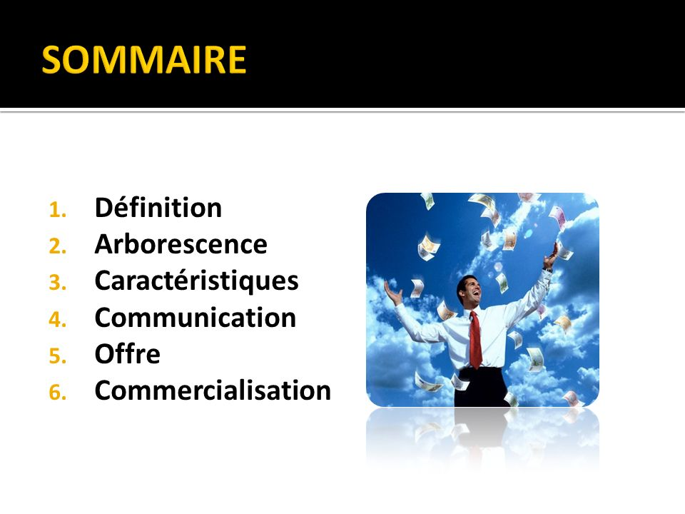 1. Définition 2. Arborescence 3. Caractéristiques 4. Communication 5. Offre 6. Commercialisation