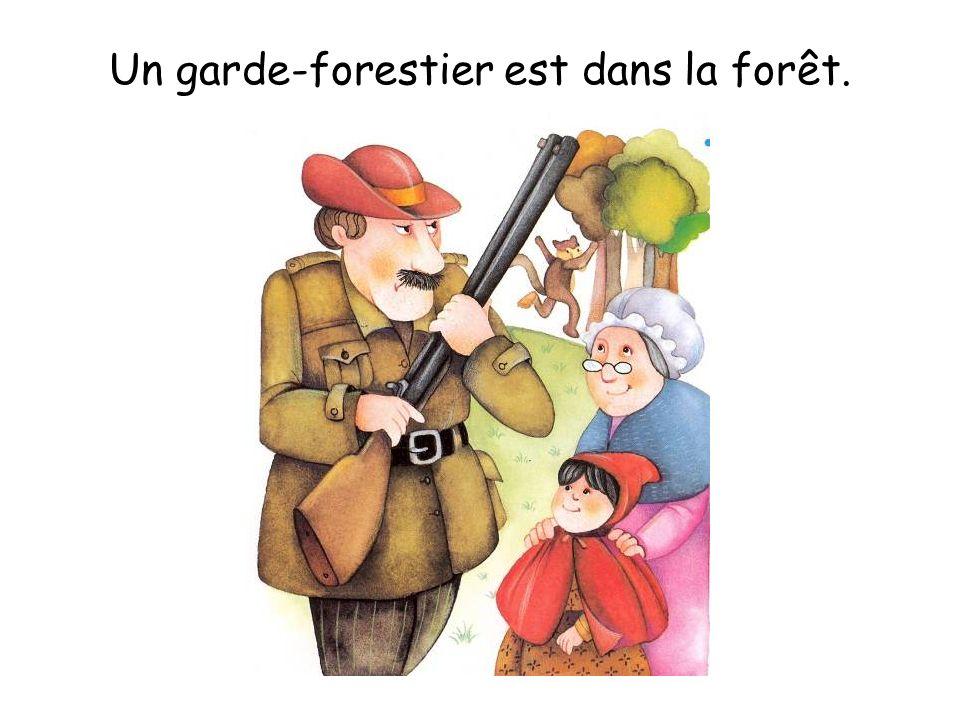 Un garde-forestier est dans la forêt.