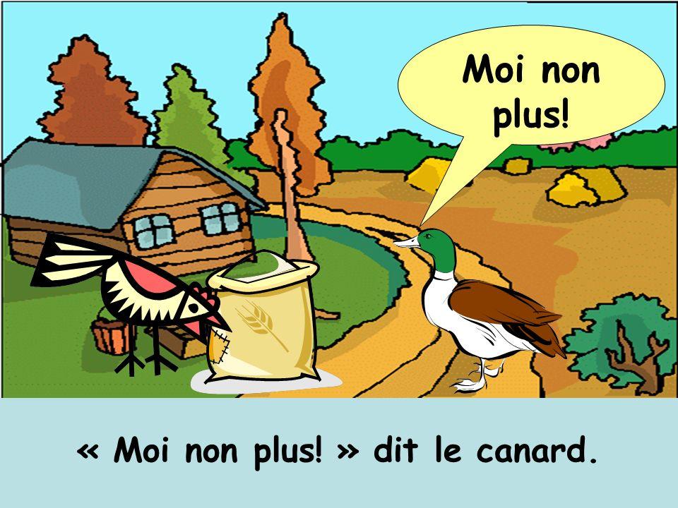 « Moi non plus! » dit le canard. Moi non plus!
