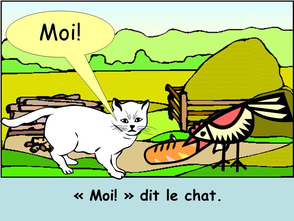 « Moi! » dit le chat. Moi!