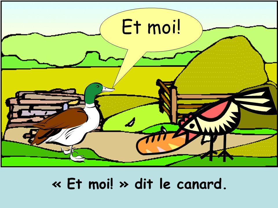 « Et moi! » dit le canard. Et moi!