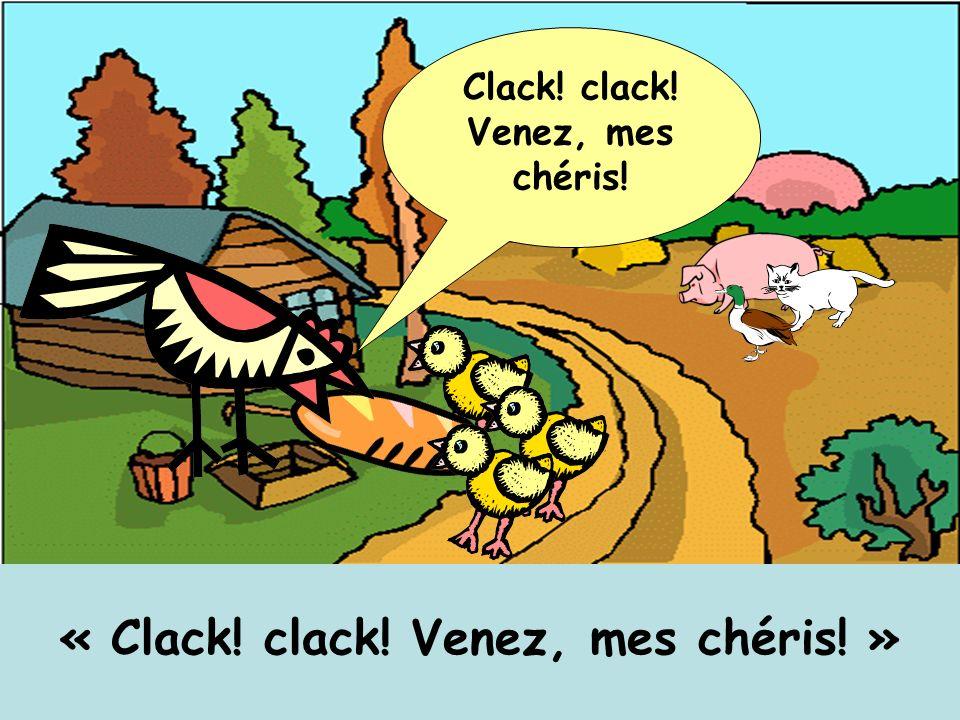 « Clack! clack! Venez, mes chéris! » Clack! clack! Venez, mes chéris!