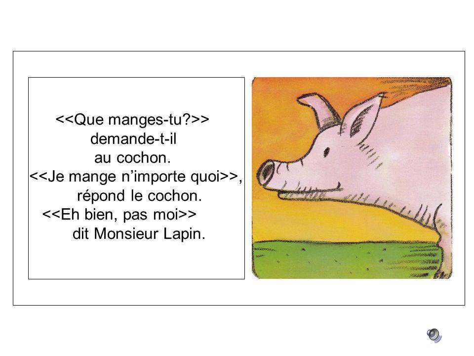 > demande-t-il au cochon. >, répond le cochon. > dit Monsieur Lapin.
