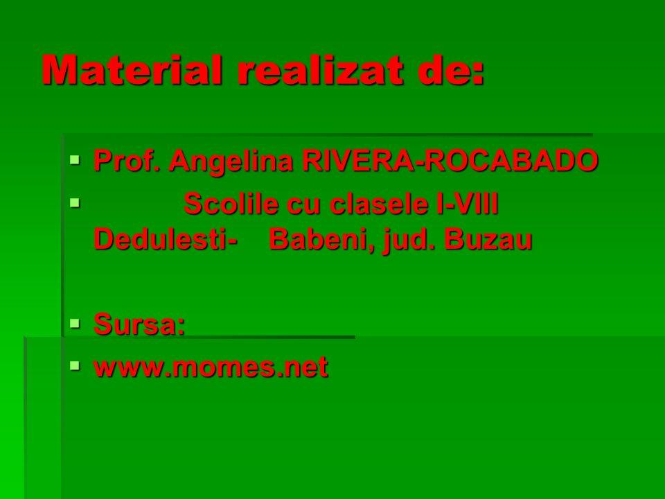 Material realizat de: Prof.Angelina RIVERA-ROCABADO Prof.