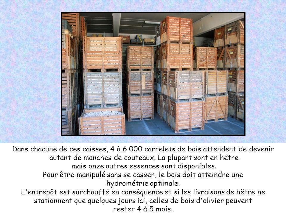 Dans chacune de ces caisses, 4 à 6 000 carrelets de bois attendent de devenir autant de manches de couteaux.