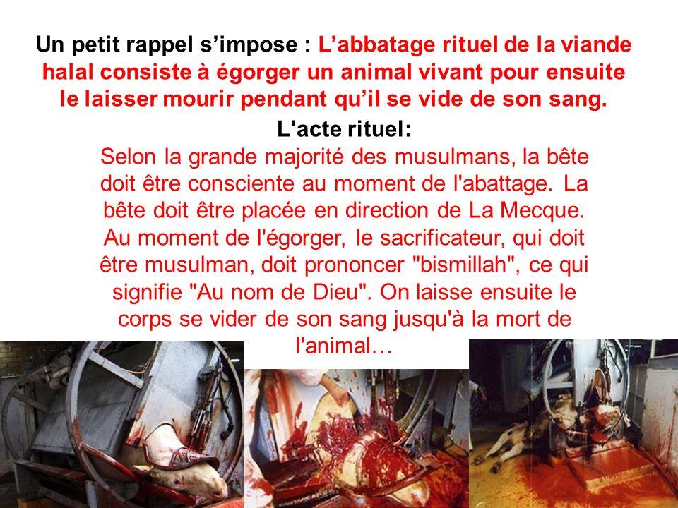 Un petit rappel simpose : Labbatage rituel de la viande halal consiste à égorger un animal vivant pour ensuite le laisser mourir pendant quil se vide de son sang.