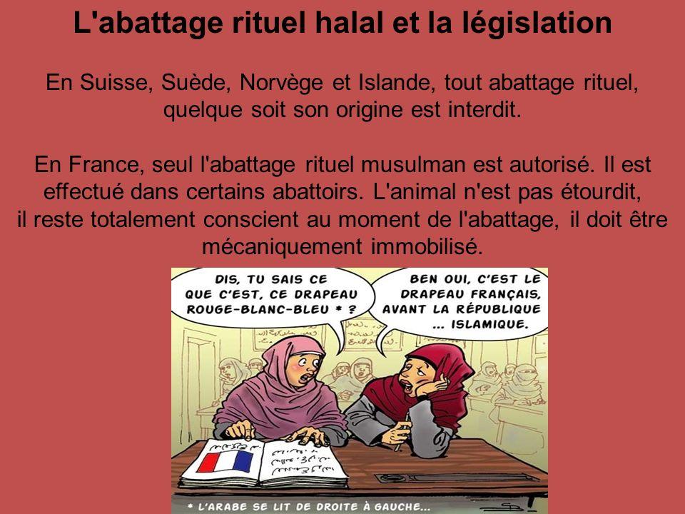 L abattage rituel halal et la législation En Suisse, Suède, Norvège et Islande, tout abattage rituel, quelque soit son origine est interdit.