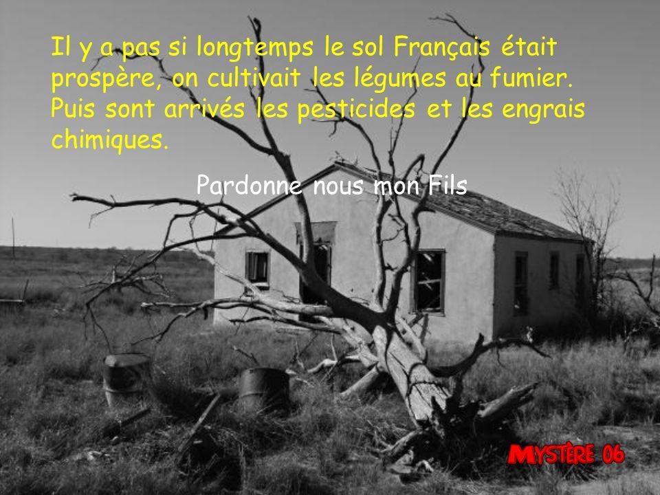Il y a pas si longtemps le sol Français était prospère, on cultivait les légumes au fumier.