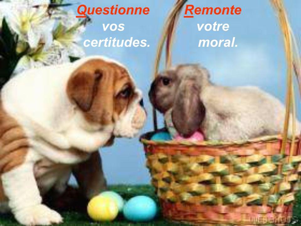 Questionne vos certitudes. Remonte votre moral.