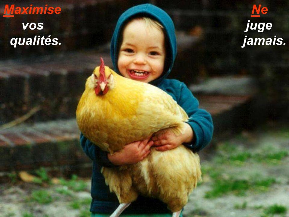 Maximise vos qualités. Ne juge jamais.