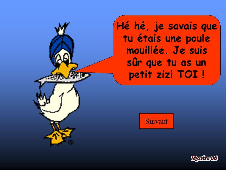 Aïe, aïe, ton canard est rentré dans le local de la 6 eme compagnie de CRS de St Laurent du Var. Suivant