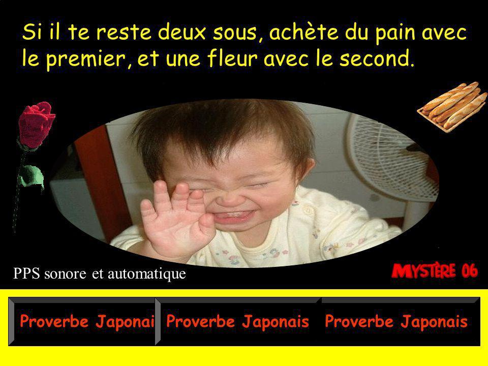 Proverbe Japonais Si il te reste deux sous, achète du pain avec le premier, et une fleur avec le second.