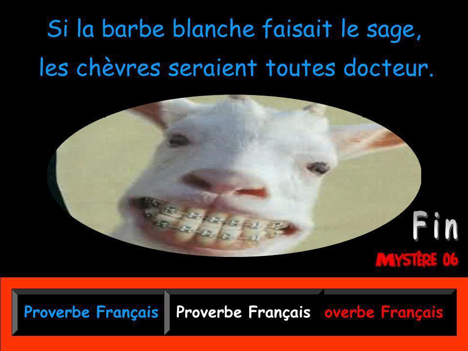 Proverbe Français Si la barbe blanche faisait le sage, Si la barbe blanche faisait le sage, les chèvres seraient toutes docteur.