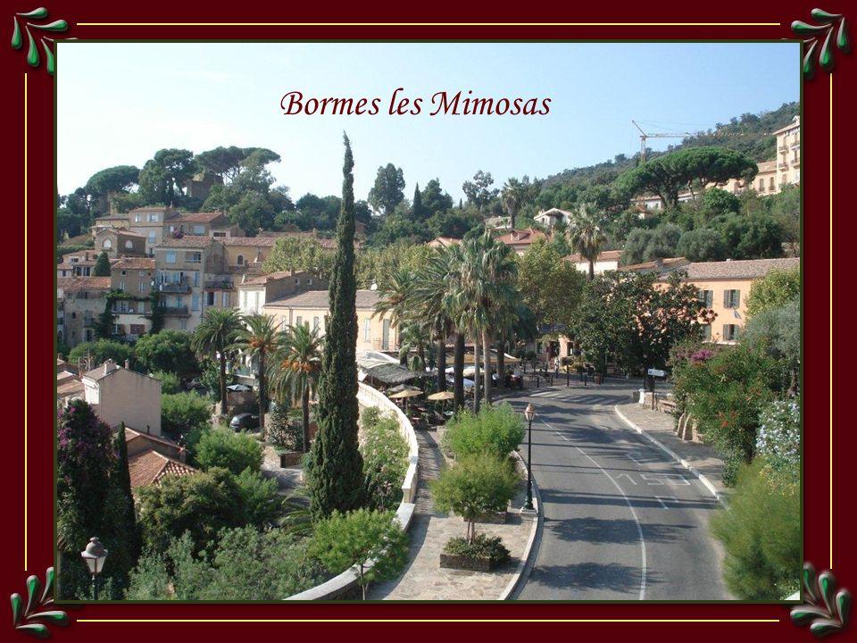 Vue sur le Lavandou depuis Bormes les Mimosas