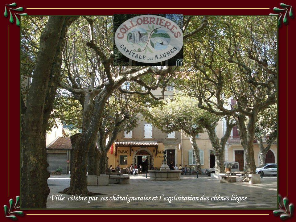 Ville célèbre par ses châtaigneraies et lexploitation des chênes lièges