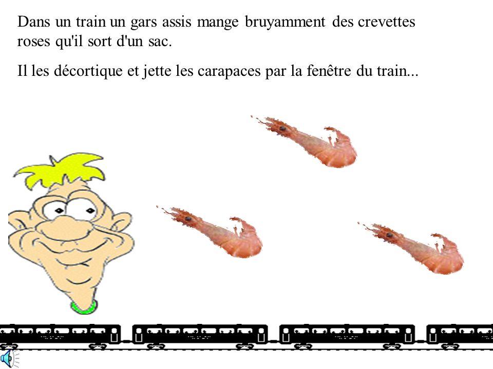 Dans un train un gars assis mange bruyamment des crevettes roses qu il sort d un sac.