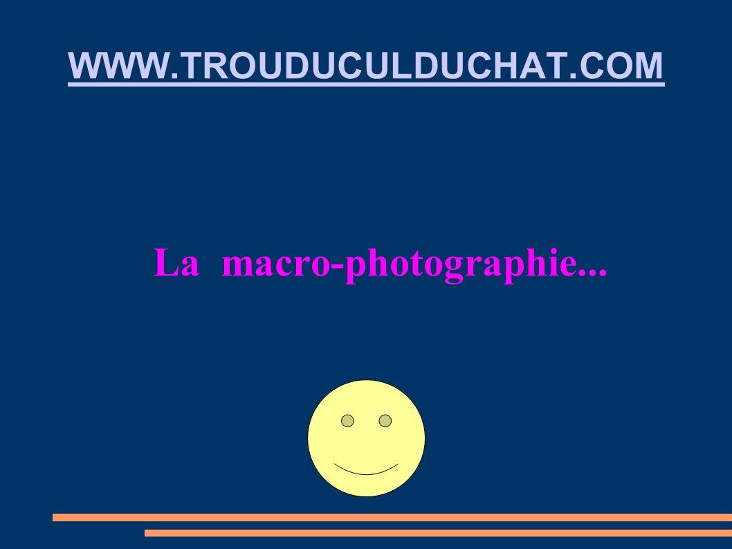 WWW.TROUDUCULDUCHAT.COM La macro-photographie...