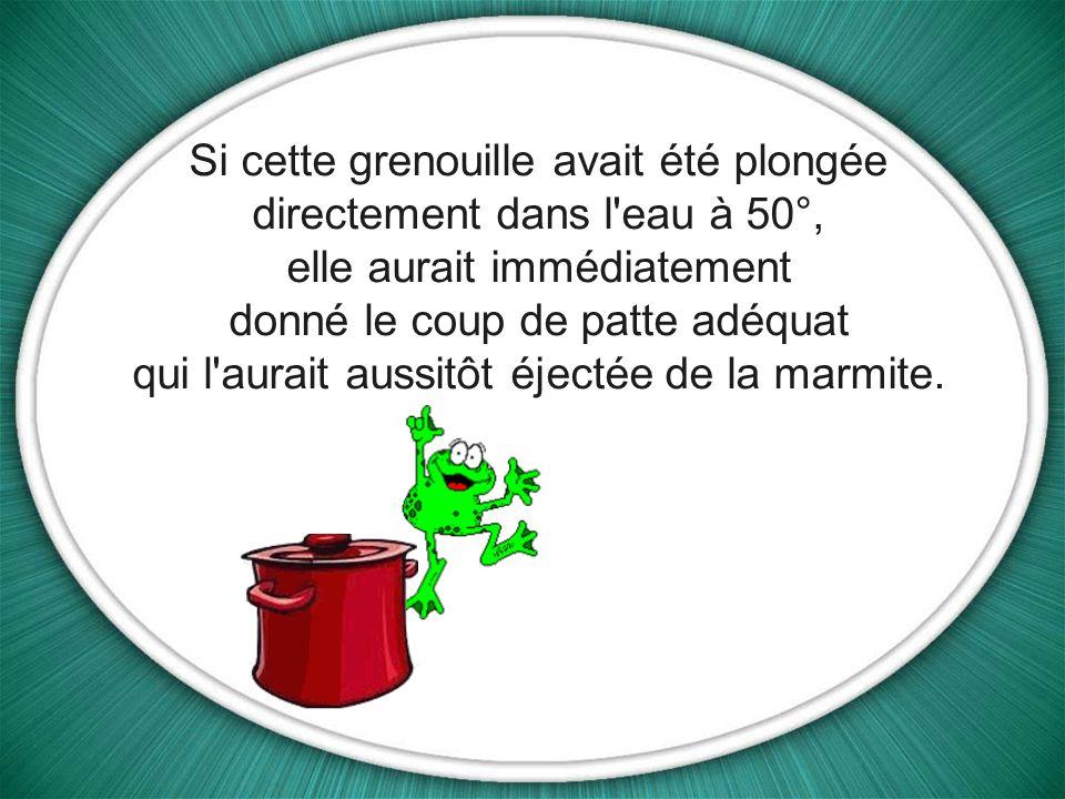 La température continue daugmenter jusqu'au moment où la grenouille va tout simplement finir par cuire et mourir.