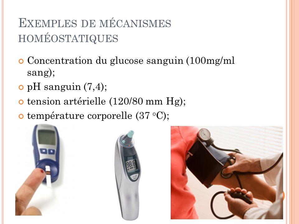 E XEMPLES DE MÉCANISMES HOMÉOSTATIQUES Concentration du glucose sanguin (100mg/ml sang); pH sanguin (7,4); tension artérielle (120/80 mm Hg); températ