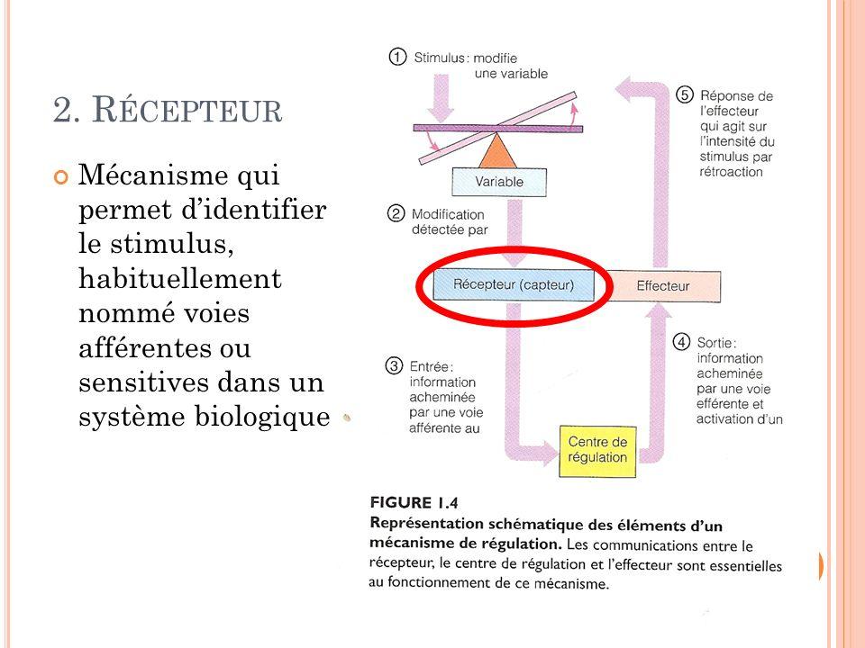 2. R ÉCEPTEUR Mécanisme qui permet didentifier le stimulus, habituellement nommé voies afférentes ou sensitives dans un système biologique