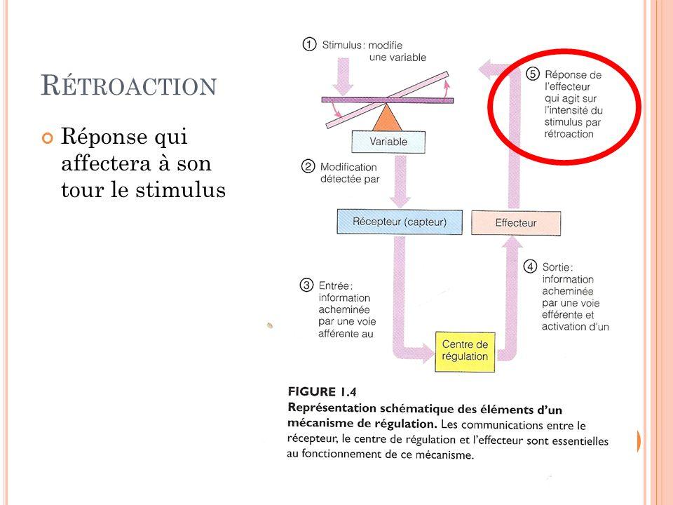 R ÉTROACTION Réponse qui affectera à son tour le stimulus