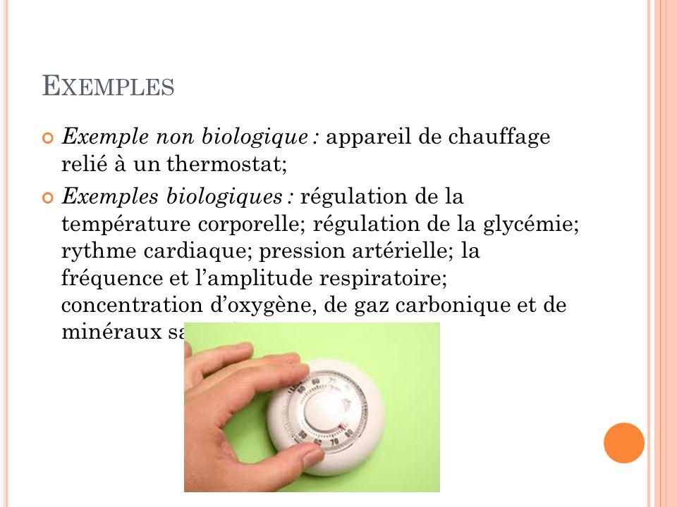 E XEMPLES Exemple non biologique : appareil de chauffage relié à un thermostat; Exemples biologiques : régulation de la température corporelle; régula