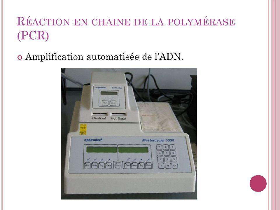 R ÉACTION EN CHAINE DE LA POLYMÉRASE (PCR) Amplification automatisée de lADN.
