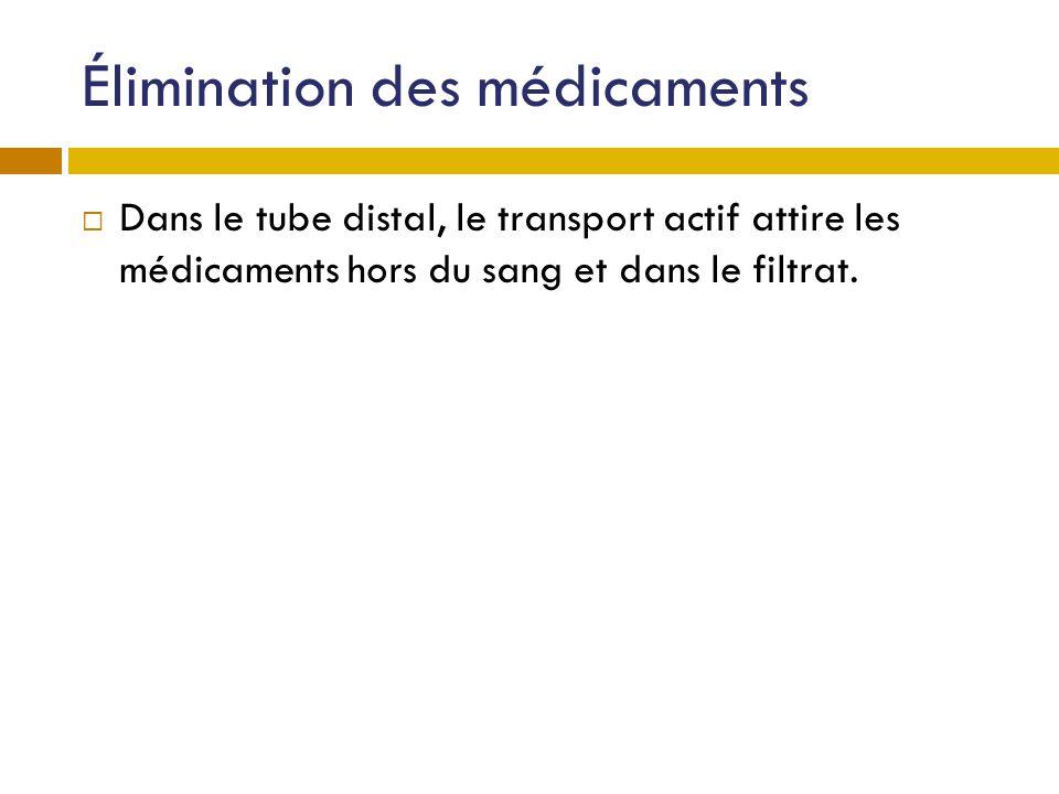 Élimination des médicaments Dans le tube distal, le transport actif attire les médicaments hors du sang et dans le filtrat.