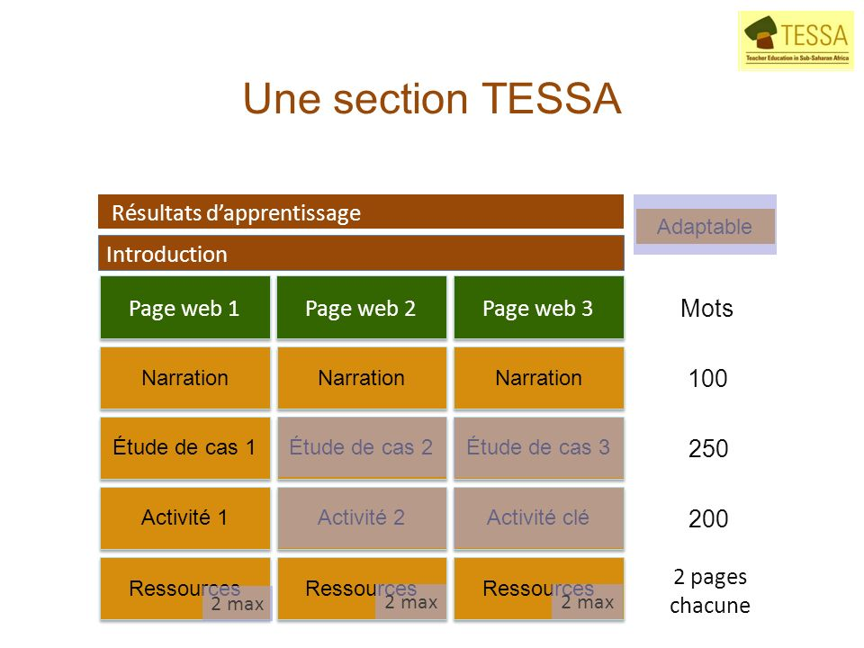 Une section TESSA Résultats dapprentissage Introduction Mots 100 250 200 2 pages chacune Activité 2Activité 1 Page web 1Page web 2Page web 3 Narration