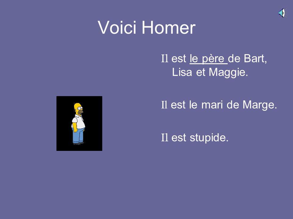 Voici Homer Il est le père de Bart, Lisa et Maggie. Il est le mari de Marge. Il est stupide.