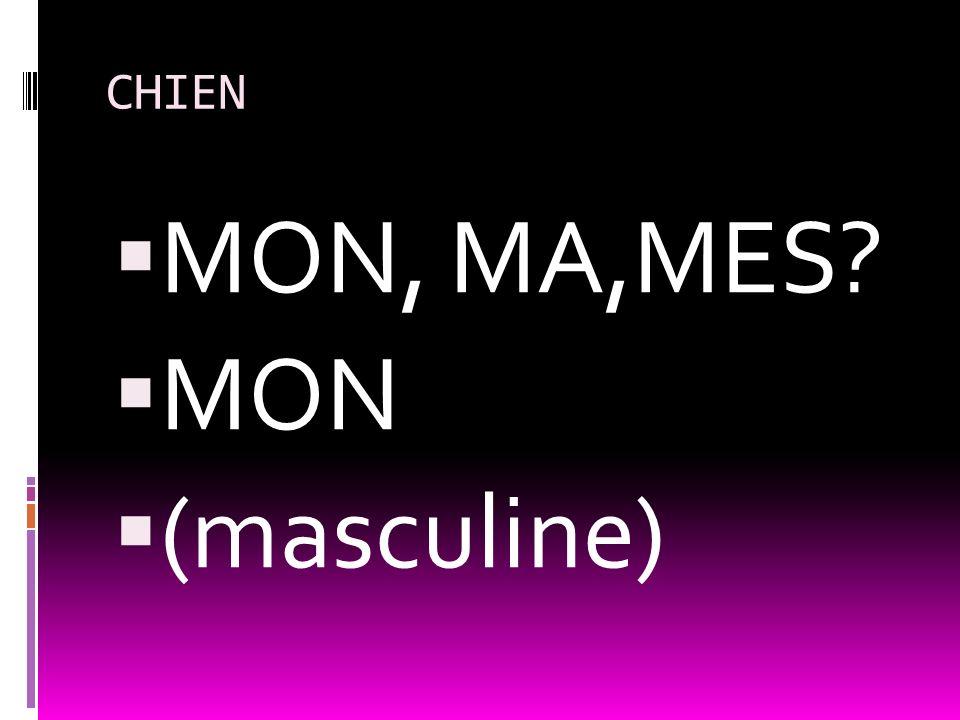 CHIEN MON, MA,MES MON (masculine)