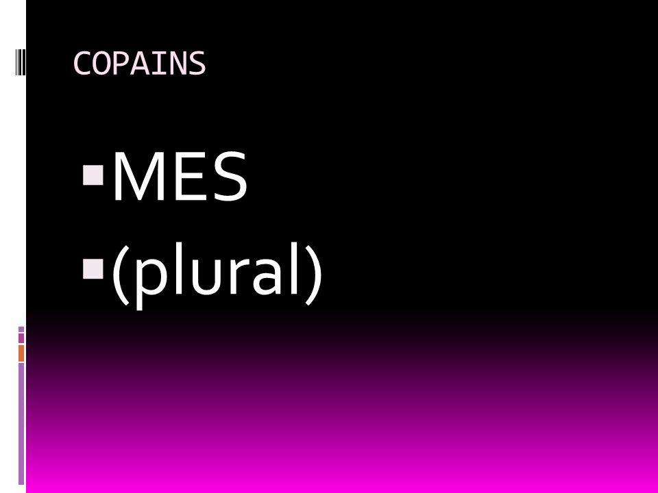 COPAINS MES (plural)