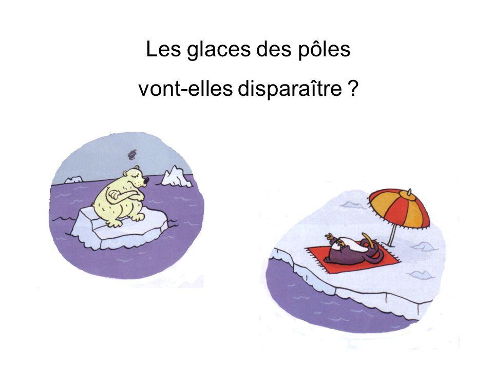 Les glaces des pôles vont-elles disparaître ?
