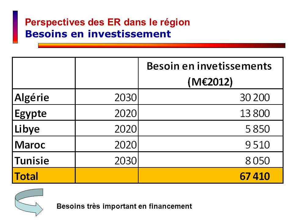 Besoins très important en financement Perspectives des ER dans le région Besoins en investissement