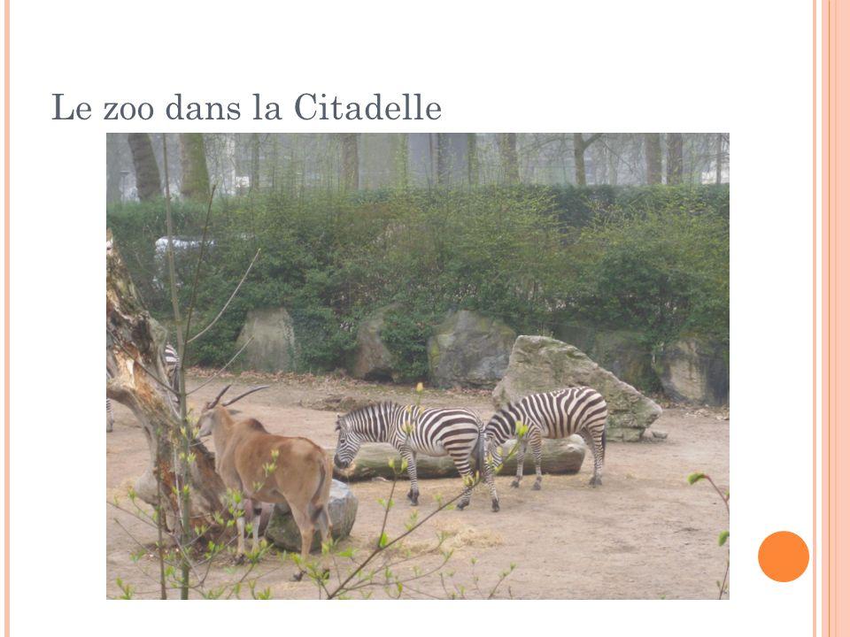 Le zoo dans la Citadelle