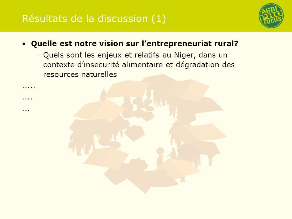 Résultats de la discussion (1) Quelle est notre vision sur lentrepreneuriat rural.