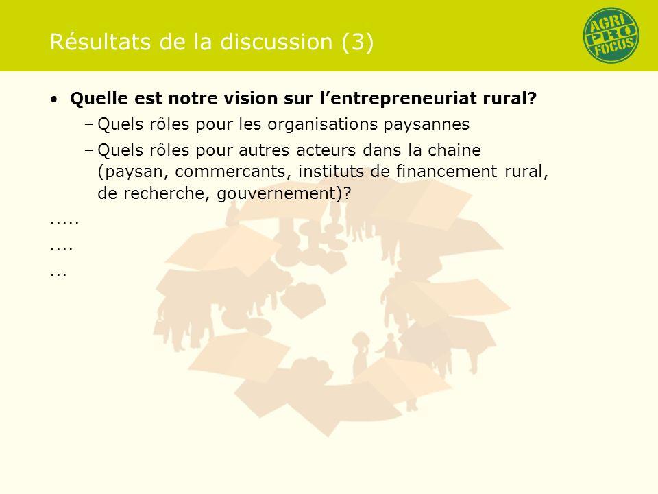 Résultats de la discussion (3) Quelle est notre vision sur lentrepreneuriat rural.