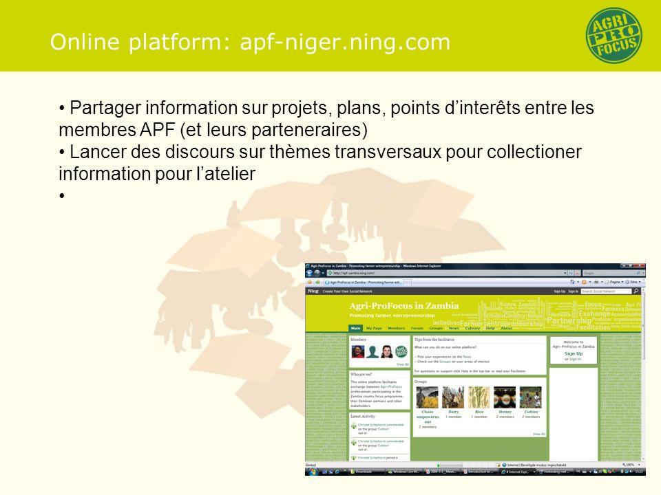 Online platform: apf-niger.ning.com Partager information sur projets, plans, points dinterêts entre les membres APF (et leurs parteneraires) Lancer des discours sur thèmes transversaux pour collectioner information pour latelier