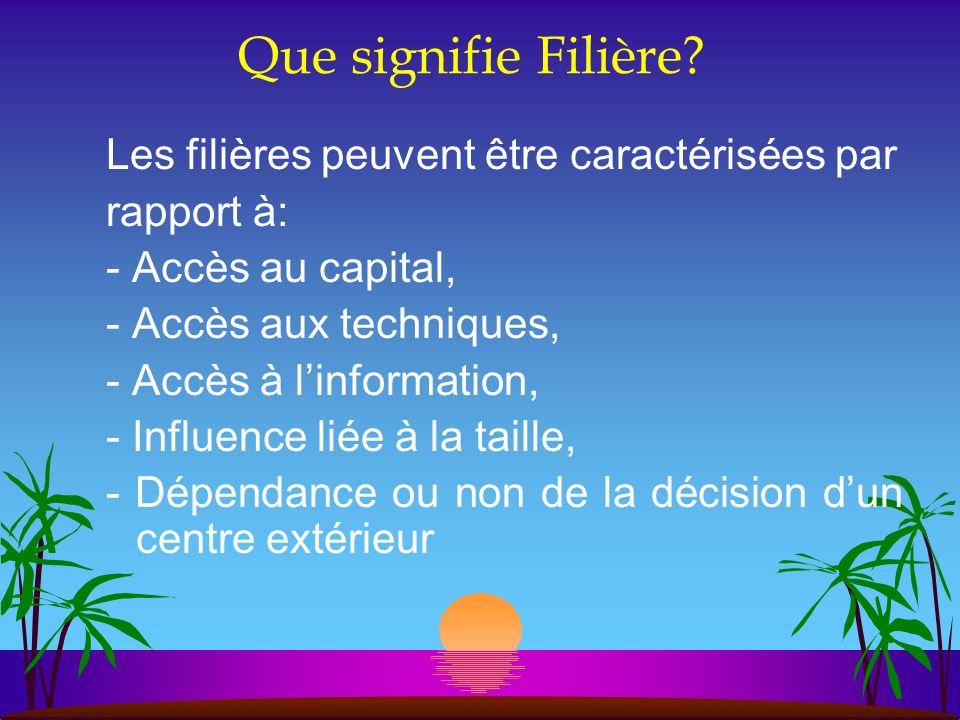 Que signifie Filière? Les filières peuvent être caractérisées par rapport à: - Accès au capital, - Accès aux techniques, - Accès à linformation, - Inf