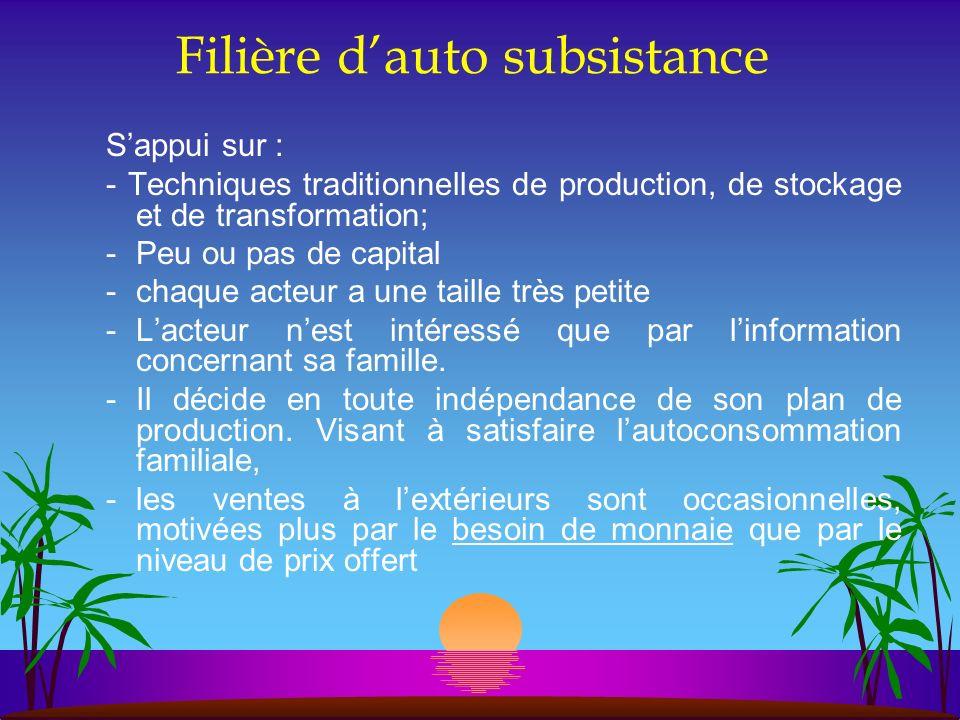 Filière dauto subsistance Sappui sur : - Techniques traditionnelles de production, de stockage et de transformation; -Peu ou pas de capital -chaque ac