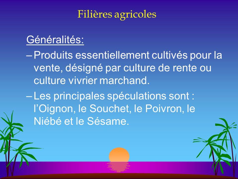 Filières agricoles Généralités: –Produits essentiellement cultivés pour la vente, désigné par culture de rente ou culture vivrier marchand. –Les princ